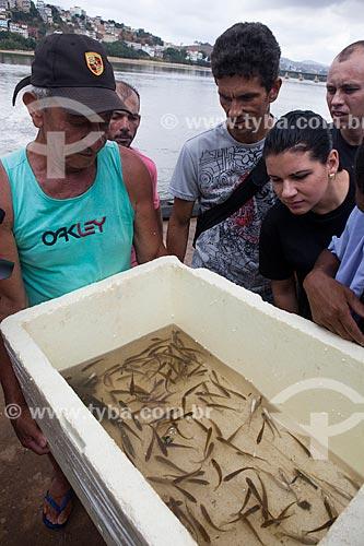 Peixes resgatados durante a operação Arca de Noé - operação para coletar peixes no Rio Doce e transportá-los para tanques antes da chegada da lama contaminada por metais pesados como arsênio, cádmio, chumbo, cromo e níquel  - Colatina - Espírito Santo (ES) - Brasil