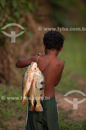 Menino ribeirinho carregando tucunaré (Cichla ocellaris)  - Manaus - Amazonas (AM) - Brasil