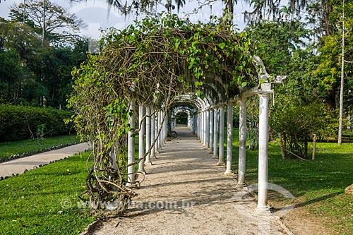 Detalhe de pérgola no Jardim Botânico do Rio de Janeiro  - Rio de Janeiro - Rio de Janeiro (RJ) - Brasil