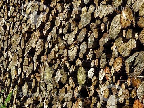 Detalhe de pilha de lenha  - Gramado - Rio Grande do Sul (RS) - Brasil