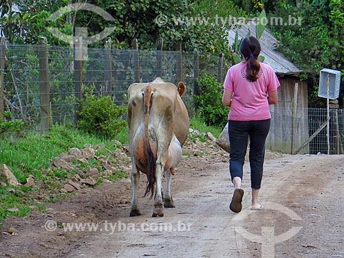 Vaca leiteira e mulher em estrada de terra  - Gramado - Rio Grande do Sul (RS) - Brasil