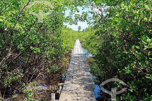 Ponte no sobre o Rio Tatuamunha na área do Projeto Peixe-boi - Rota Ecológica de Alagoas  - Porto de Pedras - Alagoas (AL) - Brasil