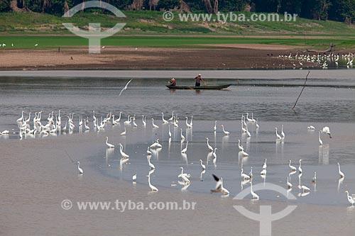 Canoa com ribeirinhos no Rio Amazonas  - Manaus - Amazonas (AM) - Brasil