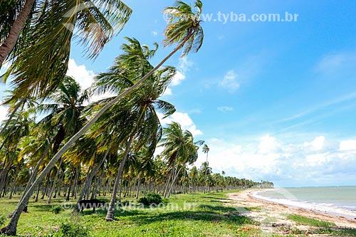 Orla da Praia do Patacho  - Porto de Pedras - Alagoas (AL) - Brasil