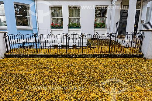 Chão coberto por flores em Londres  - Londres - Grande Londres - Inglaterra