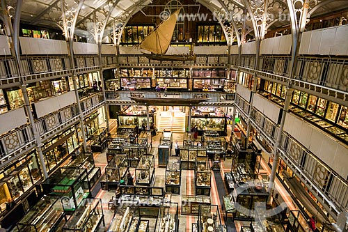 Interior do Museu Pitt Rivers na Universidade de Oxford  - Oxford - Condado de Oxfordshire - Inglaterra
