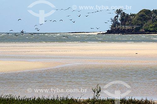 Vista da orla da Praia de Água Boa - Ilha de Marajó  - Salvaterra - Pará (PA) - Brasil