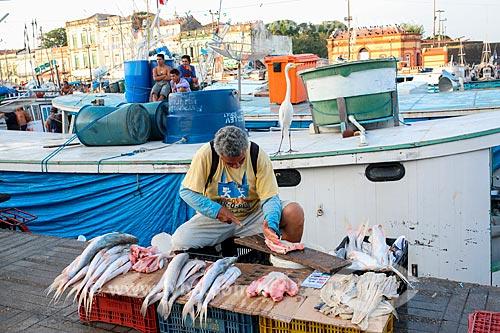 Peixeiro próximo ao Mercado Ver-o-peso  - Belém - Pará (PA) - Brasil