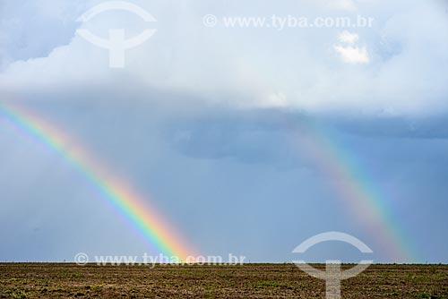 Arco-Íris em plantação de cana-de-açúcar  - Mato Grosso do Sul (MS) - Brasil
