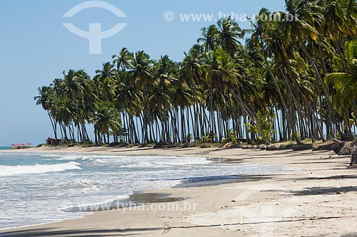 Orla da Praia dos Carneiros  - Tamandaré - Pernambuco (PE) - Brasil