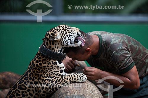 Onça pintada (Panthera onca) e soldado do Centro de Instrução de Guerra na Selva (CIGS)  - Manaus - Amazonas (AM) - Brasil
