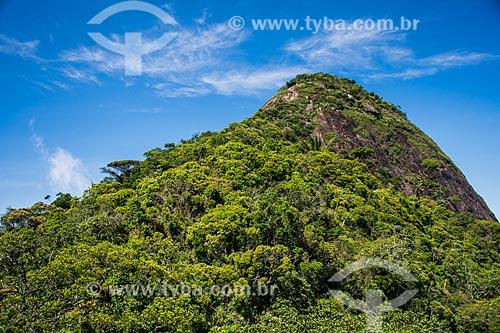 Vista do Pico da Tijuca  - Rio de Janeiro - Rio de Janeiro (RJ) - Brasil
