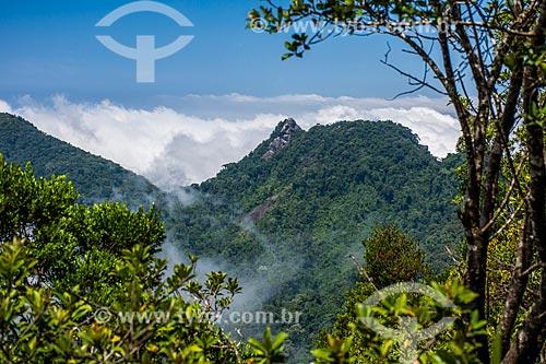 Paisagem a partir da trilha para o Pico da Tijuca  - Rio de Janeiro - Rio de Janeiro (RJ) - Brasil