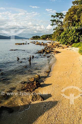 Praia da Ponta do Sambaqui - Parque Aníbal da Rocha Nunes Pires  - Florianópolis - Santa Catarina (SC) - Brasil