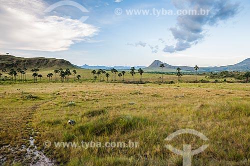 Vista do Jardim de Maytrea a partir do Rodovia GO-239  - Alto Paraíso de Goiás - Goiás (GO) - Brasil