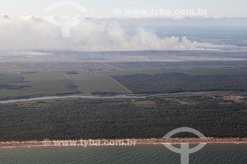 Foto aérea da Reserva Biológica de Comboios  - Aracruz - Espírito Santo (ES) - Brasil