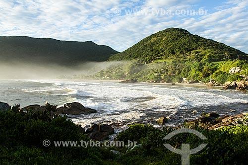 Orla da Praia do Matadeiro  - Florianópolis - Santa Catarina (SC) - Brasil