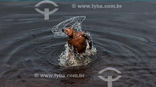 Criança ribeirinha mergulhando no Rio Negro  - Barcelos - Amazonas (AM) - Brasil