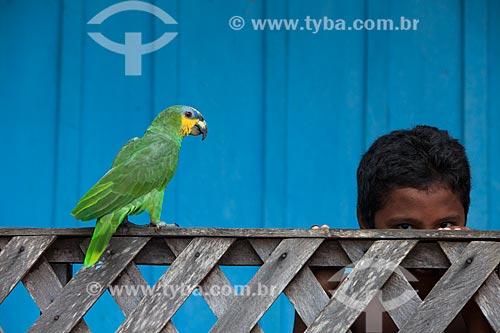 Papagaio (Amazona aestiva) e menino em comunidade ribeirinha  - Barcelos - Amazonas (AM) - Brasil