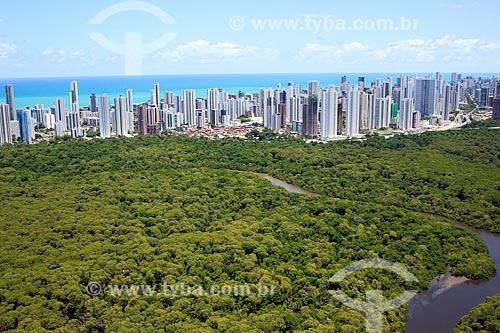 Foto aérea do Parque dos Manguezais com prédios ao fundo  - Recife - Pernambuco (PE) - Brasil