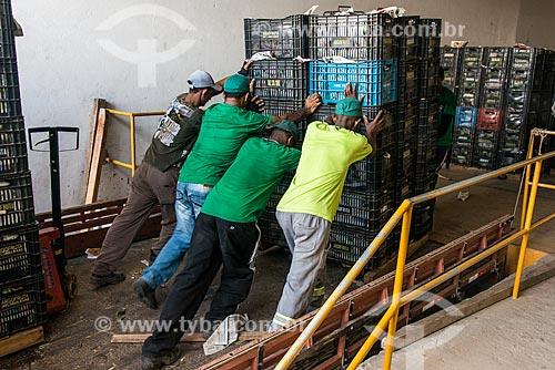 Descarga de caixas de mangas para mercado interno no pátio de empresa embaladora - Packing House - Projeto Nilo Coelho - Vale do São Francisco  - Petrolina - Pernambuco (PE) - Brasil