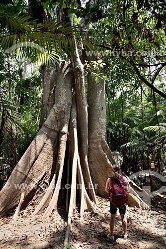Turista observando uma Sumaúma (Ceiba pentandra) no Parque Ecológico do Lago Janauari  - Iranduba - Amazonas (AM) - Brasil