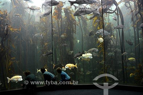 Crianças na galeria Kelp Forest Exhibit do Two Oceans Aquarium (Aquário Dois Oceanos)  - Cidade do Cabo - Província do Cabo Ocidental - África do Sul