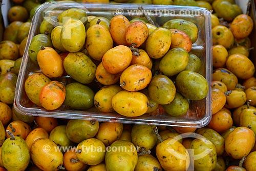Detalhe do fruto da seriguela (Spondias purpurea) à venda em feira livre  - Rio de Janeiro - Rio de Janeiro (RJ) - Brasil