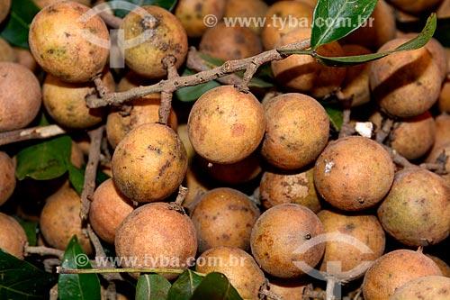 Detalhe de pitombas à venda em feira livre  - Rio de Janeiro - Rio de Janeiro (RJ) - Brasil