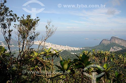 Vista geral  do bairro do Leblon a partir da trilha do Morro do Queimado com a Lagoa Rodrigo de Freitas - à esquerda - e o Morro Dois Irmãos - à direita  - Rio de Janeiro - Rio de Janeiro (RJ) - Brasil