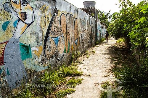 Muro grafitado no caminho para a Praia dos Açores  - Florianópolis - Santa Catarina (SC) - Brasil