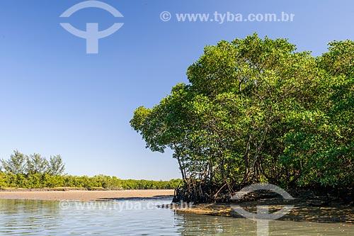 Vista geral da Restinga da Marambaia - área protegida pela Marinha do Brasil  - Rio de Janeiro - Rio de Janeiro (RJ) - Brasil