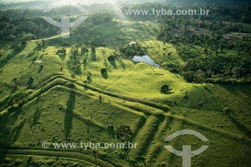 Foto aérea do Geoglifo do Tequinho  - Rio Branco - Acre (AC) - Brasil