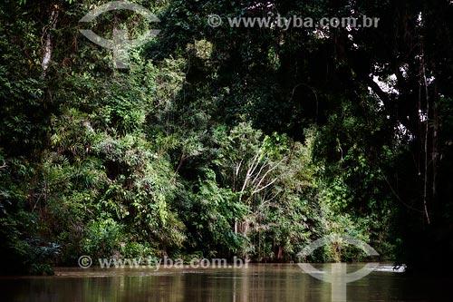 Leito de rio do Rio Japiim  - Cruzeiro do Sul - Acre (AC) - Brasil