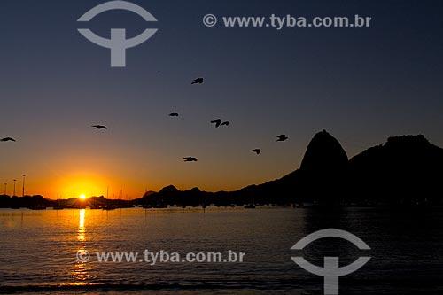 Amanhecer no Pão de Açúcar  - Rio de Janeiro - Rio de Janeiro (RJ) - Brasil