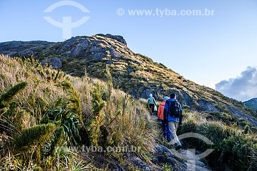 Trilha da Pedra do Sino no Parque Nacional da Serra dos Órgãos  - Teresópolis - Rio de Janeiro (RJ) - Brasil