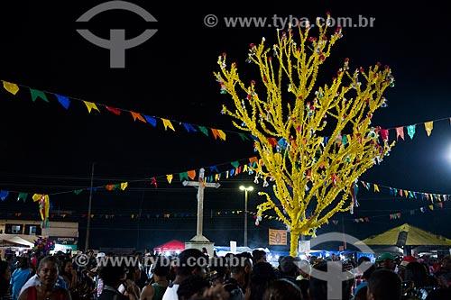 Detalhe de árvore decorada durante a festa da Morte do Boi - período da morte do personagem principal do bumba-meu-boi  - São José de Ribamar - Maranhão (MA) - Brasil