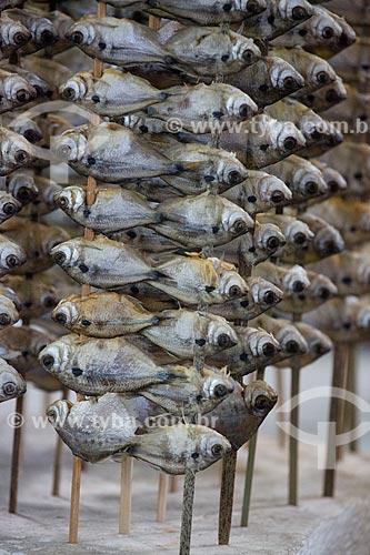 Espetinho de Piaba - também conhecido como aracu - à venda no Mercado Central de São Luís  - São Luís - Maranhão (MA) - Brasil