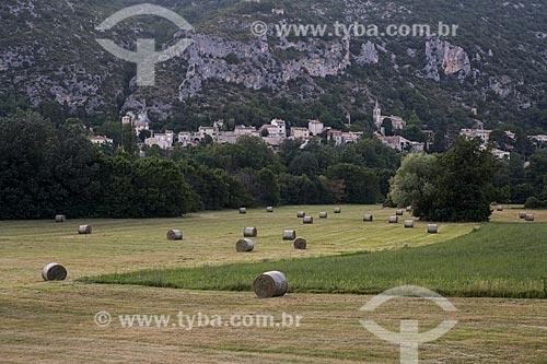 Colheita do feno com a cidade de Monieux ao fundo  - Monieux - Departamento de Vaucluse - França