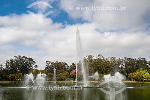 Chafariz no Lago do Ibirapuera - Parque do Ibirapuera  - São Paulo - São Paulo (SP) - Brasil