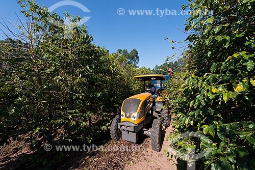 Máquina recolhendo café que caiu no solo durante a colheita  - Garça - São Paulo (SP) - Brasil