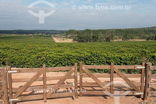Porteira de fazenda com plantação de Café  - Garça - São Paulo (SP) - Brasil