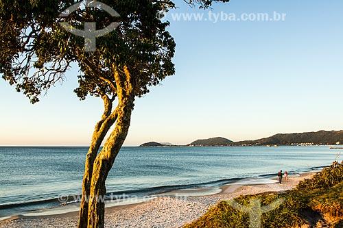 Praia de Canasvieiras  - Florianópolis - Santa Catarina (SC) - Brasil