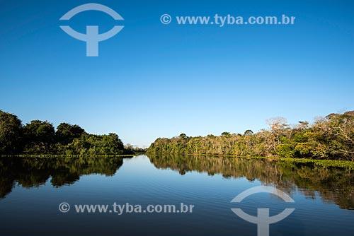 Vista do leito do Rio Pixaim  - Poconé - Mato Grosso (MT) - Brasil