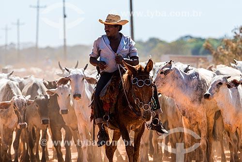 Detalhe de vaqueiro e rebanho no Pantanal  - Mato Grosso (MT) - Brasil