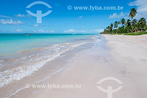 Vista geral da orla da Praia Ponta de Mangue  - Maragogi - Alagoas (AL) - Brasil