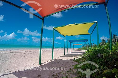Barracas de praia na orla da Praia Ponta de Mangue  - Maragogi - Alagoas (AL) - Brasil
