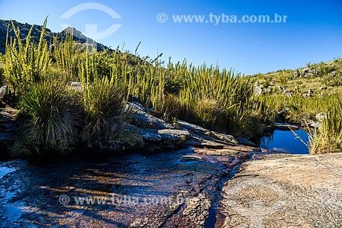Trilha entre o Pico das Agulhas Negras e a Asa de Hermes no Parque Nacional de Itatiaia  - Itatiaia - Rio de Janeiro (RJ) - Brasil
