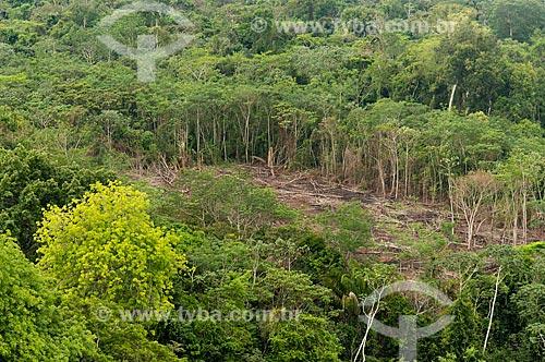 Foto aérea de clareira na Floresta Amazônica para remoção de madeira e agricultura de subsistência próximo à Aldeia Moikarakô - Terra Indígena Kayapó  - São Félix do Xingu - Pará (PA) - Brasil
