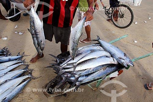 Comércio informal de peixes na orla da Praia de Mucuripe  - Fortaleza - Ceará (CE) - Brasil
